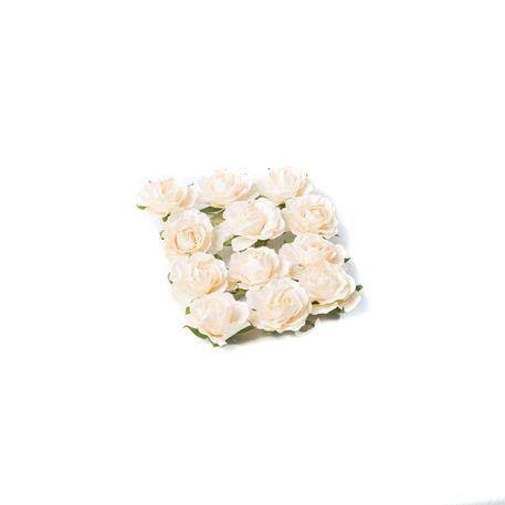 12 roses Ivoire sur tige - 3,5cm