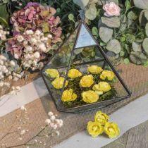 12 roses jaune - 3,5cm