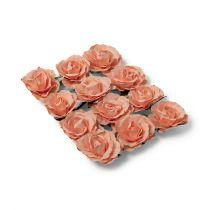 12 roses saumon sur tige - 3,5cm