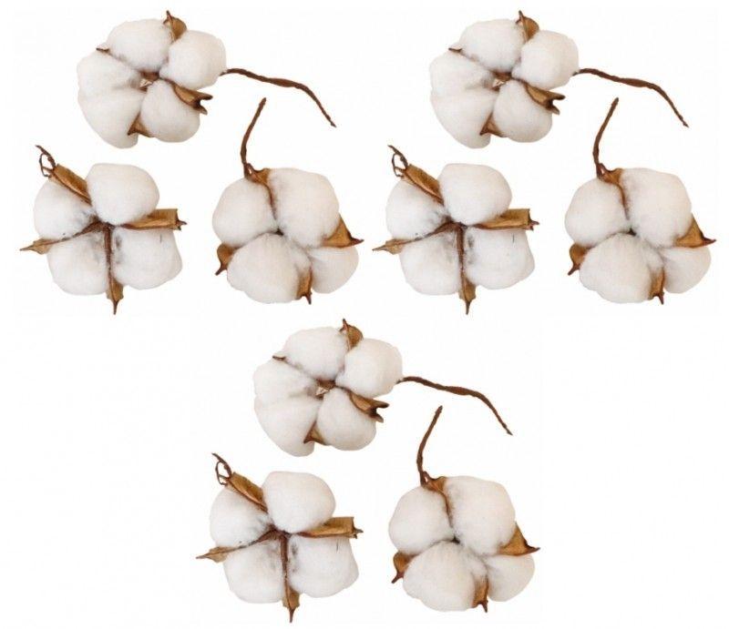 Boite de 9 Fleurs de coton naturelles