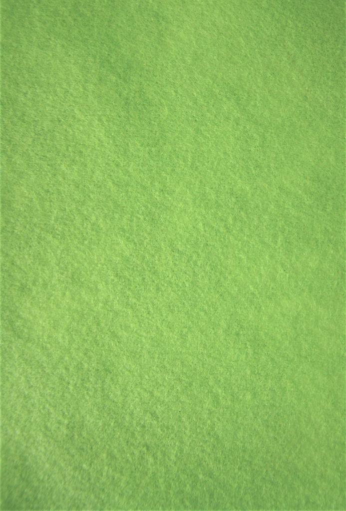 Feutrine 30x20cm vert 2mm