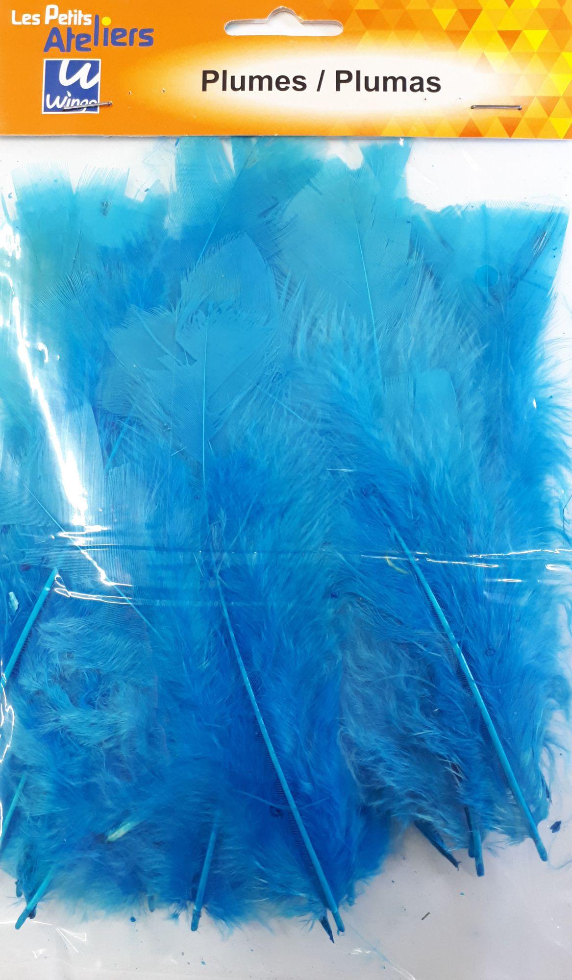 Plumes bleu x35 - les petits ateliers