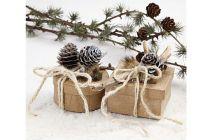 Sachet de 6 pommes de pin naturel neige