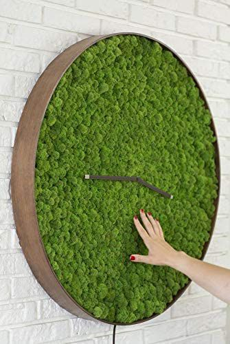 Sachet de mousse végétal 30g vert clair